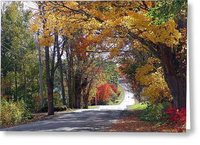 A Drive Through Autumn Beauty Greeting Card by Janet Ashworth