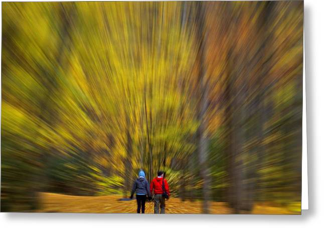 A Fall Stroll Taughannock Greeting Card by Jerry Fornarotto