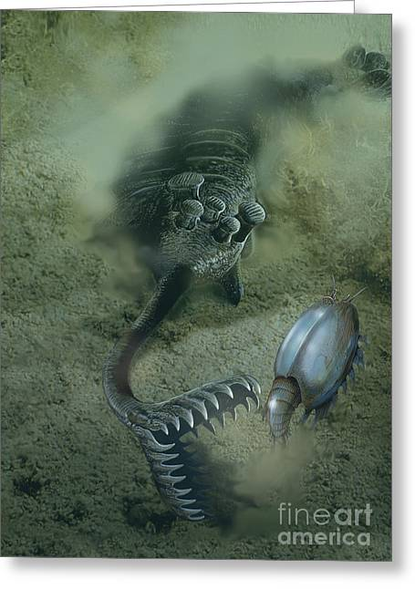 A Fearsome Opabinia Found In The Middle Greeting Card by Jan Sovak