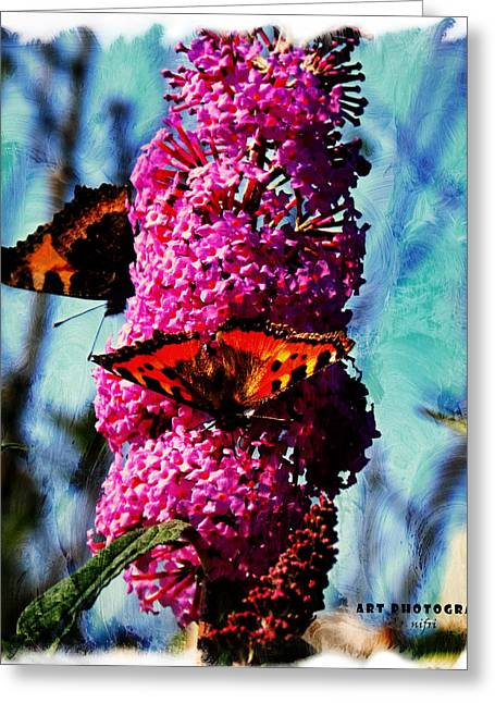 A Feeling Of Summer Greeting Card