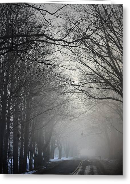 A Few Of My Favorite Things Trees In Fog Greeting Card