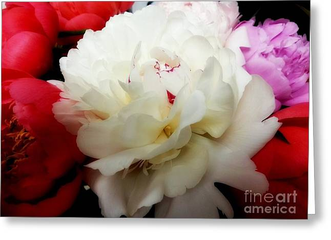 A Few Peonies Greeting Card by Heather L Wright