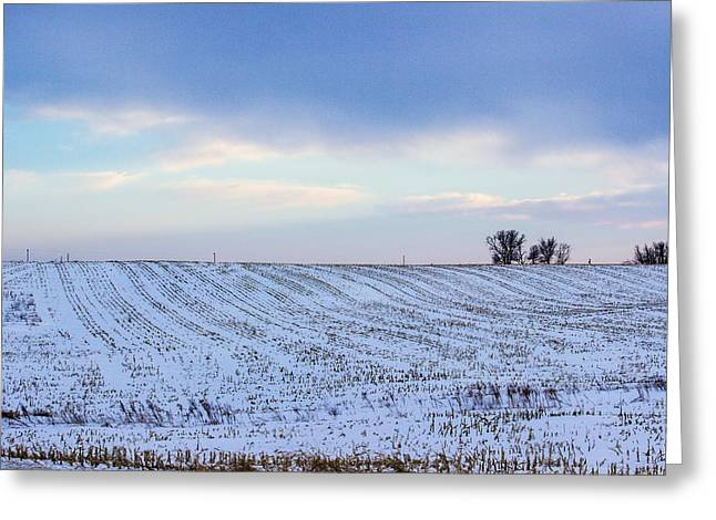 A Field In Iowa At Sunset Greeting Card