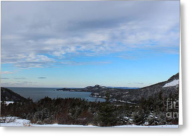 A Fine January Day On The Bay Greeting Card by Barbara Griffin