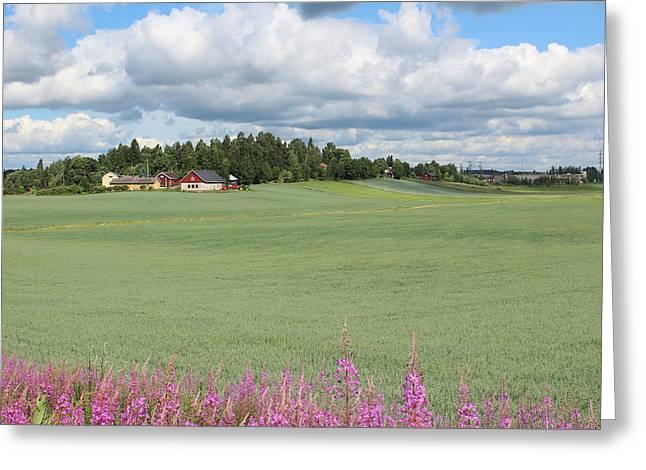 A Finnish Farm Near Helsinki Greeting Card by Tony Webb