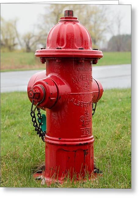 Greeting Card featuring the photograph A Fire Hydrant by Courtney Webster