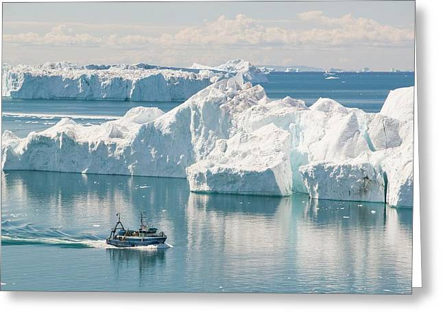 A Fishing Boat Sails Through Icebergs Greeting Card by Ashley Cooper