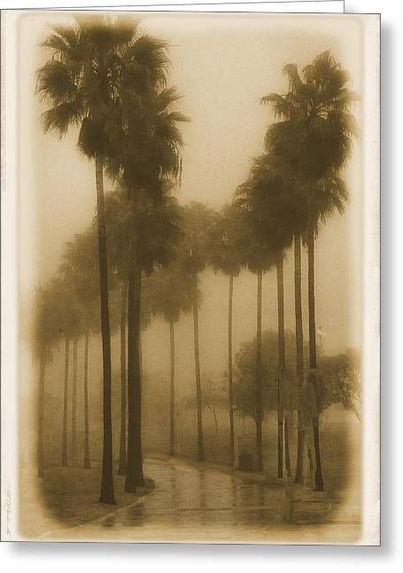 Greeting Card featuring the photograph A Foggy Day by Joseph Hollingsworth
