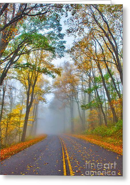 A Foggy Drive Into Autumn - Blue Ridge Parkway Greeting Card by Dan Carmichael