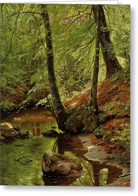 A Forest Stream Greeting Card