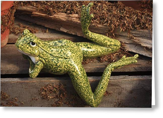 Greeting Card featuring the photograph A Frog's Life by Patrice Zinck