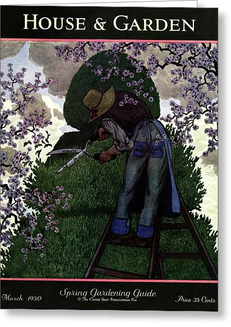 A Gardener Pruning A Tree Greeting Card