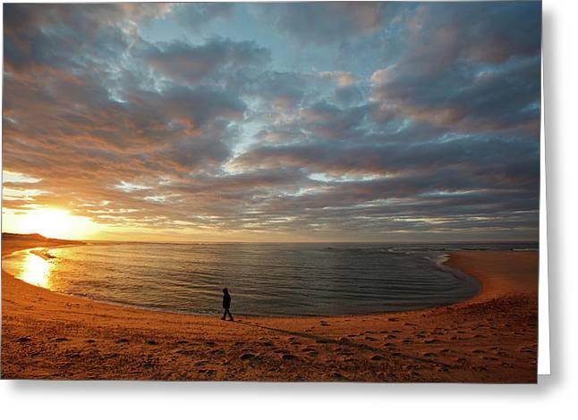 A Girl Walks On The Beach A The Sun Greeting Card