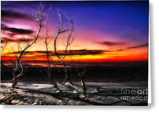 A Glorious New Day I - Outer Banks Greeting Card