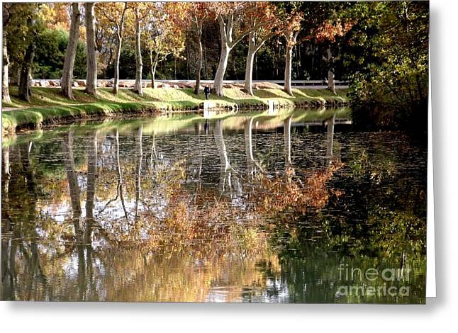A Golden Moment  Greeting Card by France  Art