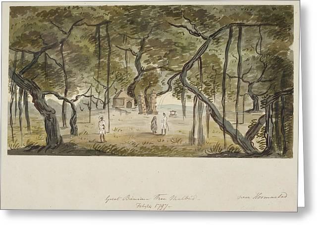 A Great Banyan Tree At Malbed Greeting Card by British Library