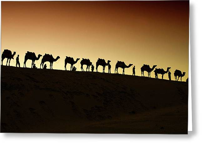 A Group Of Camel Herders Greeting Card