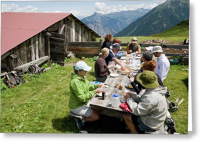 A Group Of Hikers Eat Tofu For Lunch Greeting Card