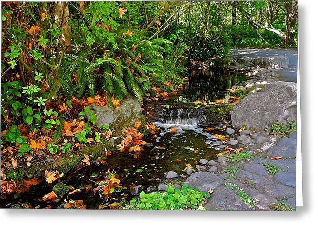 A Gurgling Stream In Oregon Greeting Card by Kirsten Giving