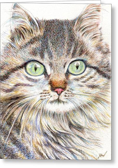 Greeting Card featuring the drawing A Handsome Cat  by Jingfen Hwu
