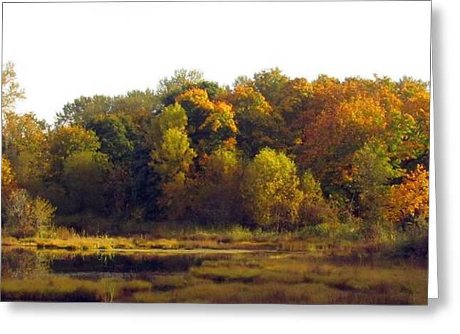 Greeting Card featuring the photograph A Harvest Of Color by I'ina Van Lawick