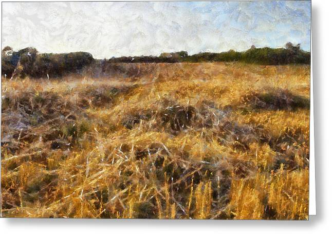 A Harvested Field Greeting Card by Georgia Fowler
