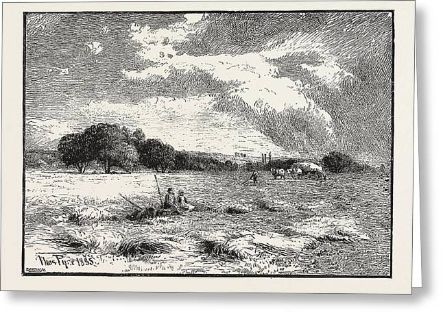A Hayfield At Marlow Greeting Card by English School