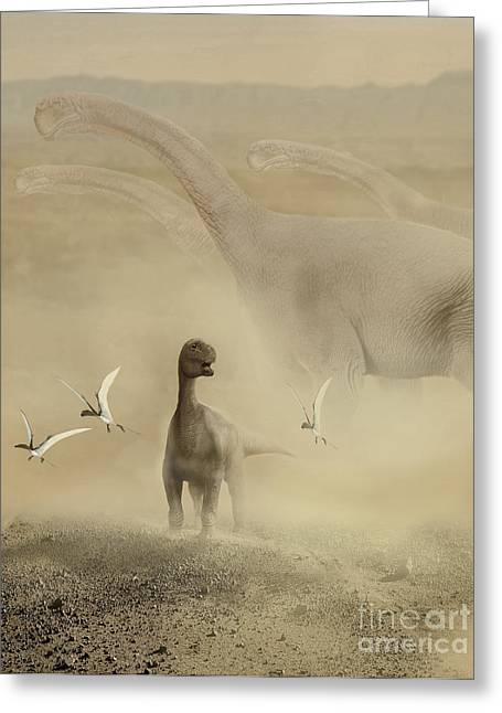 A Herd Of Camarasaurus Dinosaurs Greeting Card by Jan Sovak