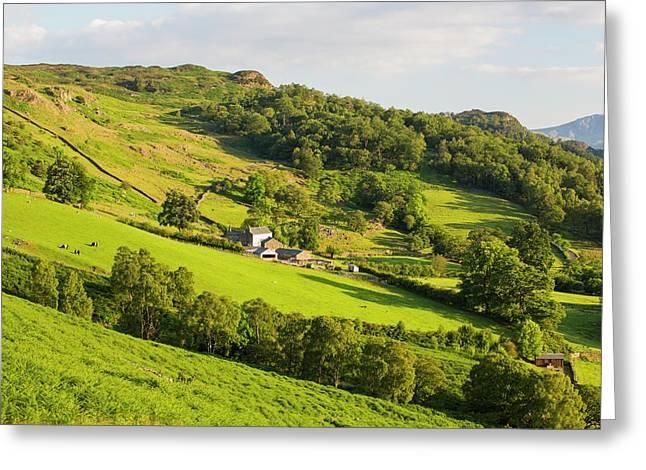 A Hill Farm Above Borrowdale Greeting Card by Ashley Cooper