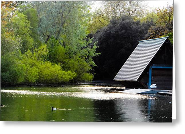 A Home By The Lake Greeting Card