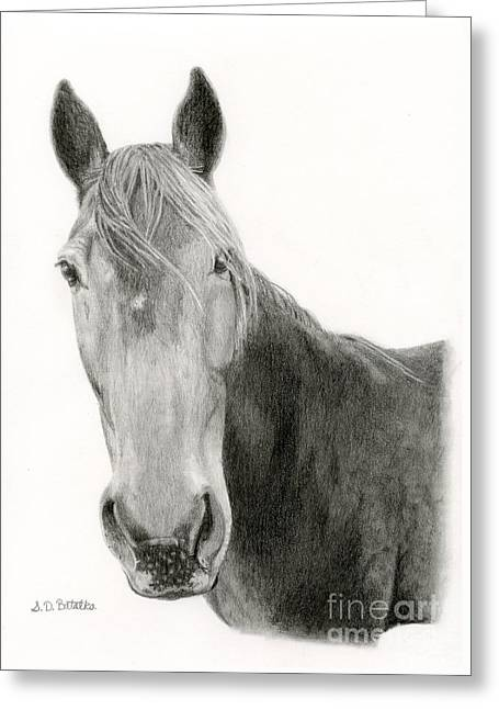 A Horse Of Course Greeting Card by Sarah Batalka