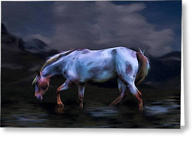 A Horse Of Many Colors Greeting Card by Tyler Robbins