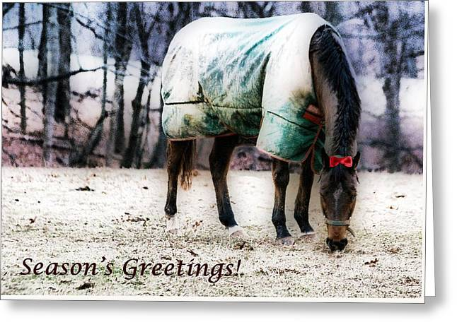 Greeting Card featuring the photograph A Horse's Season's Greeting Card by Polly Peacock