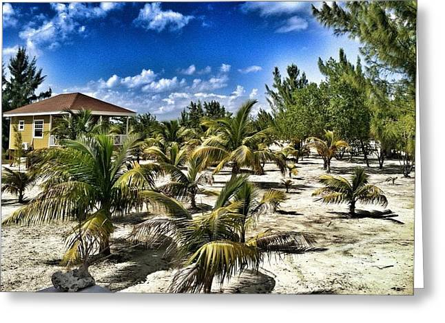 A Hot Day On Cocoa Plum Cay Greeting Card