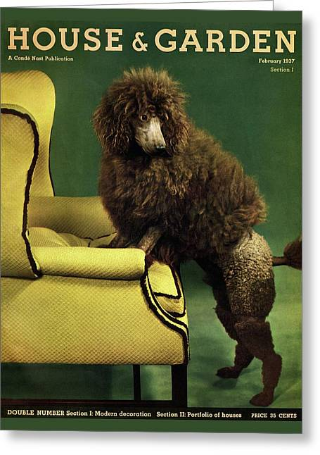 A House And Garden Cover Of A Poodle Greeting Card by Anton Bruehl