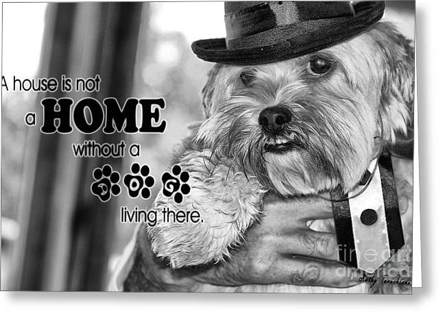 A House Is Not A Home Without A Dog Living There Greeting Card by Kathy Tarochione