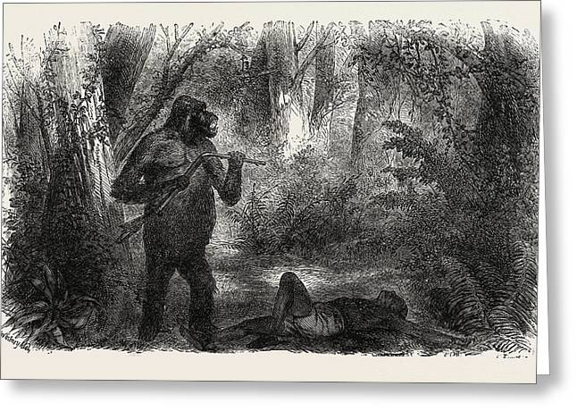 A Hunter Killed By A Gorilla Greeting Card