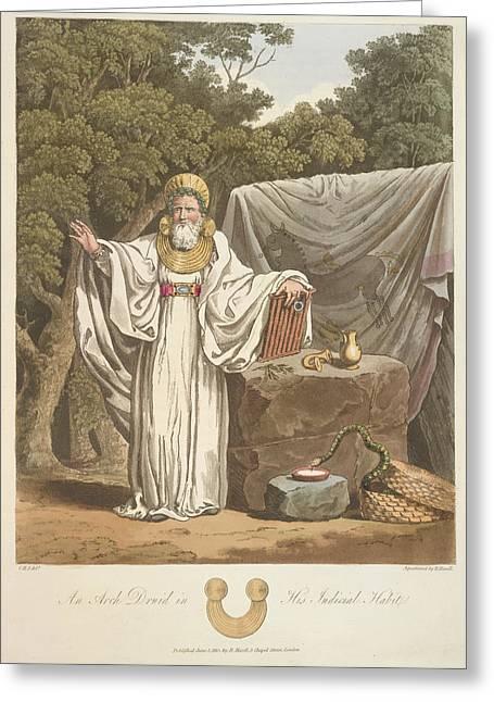 A Judicial Druid Greeting Card