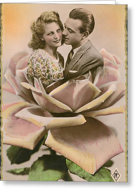 A Kiss On A Rose Greeting Card
