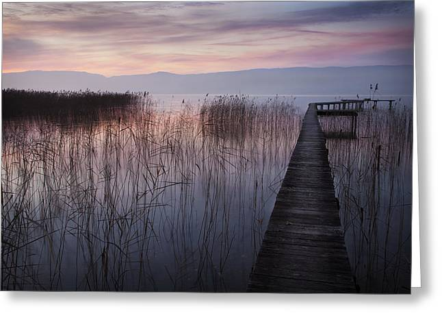 A Lake A Pier And Some Reeds Greeting Card