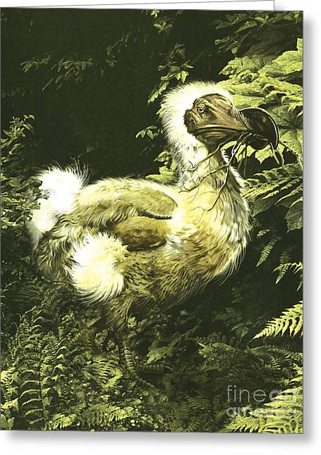 A Large Dodo Bird With Twig In Mouth Greeting Card