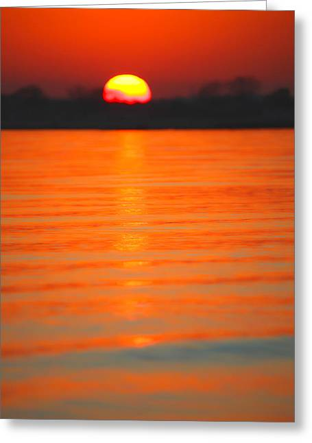 A Last Sunset Greeting Card by Karol Livote