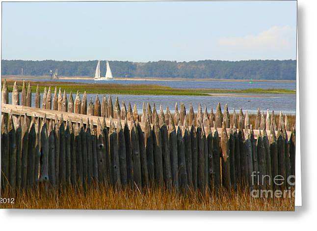 Greeting Card featuring the photograph A Lazy Morning Along The Mighty Cape Fear River by Phil Mancuso