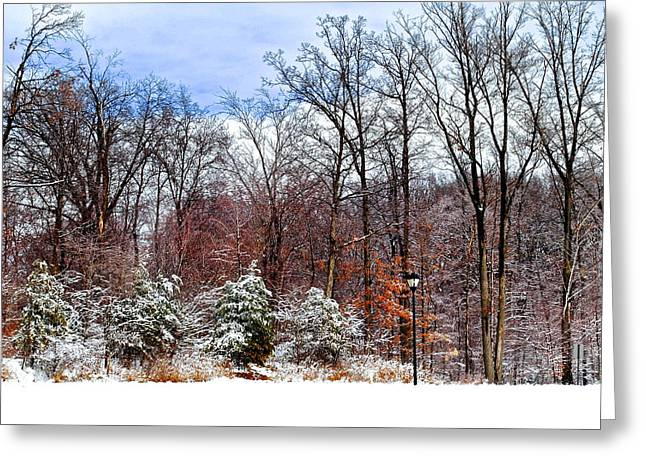 A Light Dusting Greeting Card by Frozen in Time Fine Art Photography