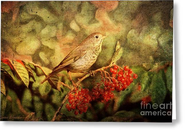 A Little Bird With Plumage Brown Greeting Card by Lianne Schneider