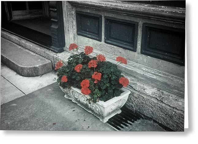 Greeting Card featuring the photograph A Little Color In A Drab World by Rodney Lee Williams