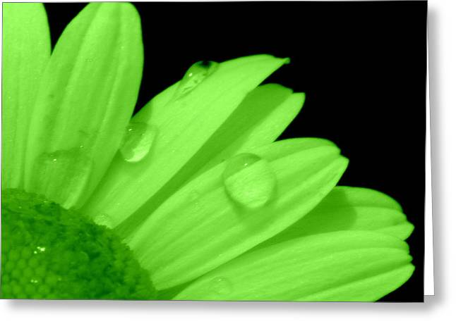 A Little Lime On Twist Greeting Card by Ed Smith