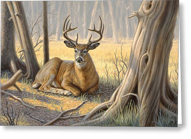 'a Little Shade' Greeting Card by Paul Krapf
