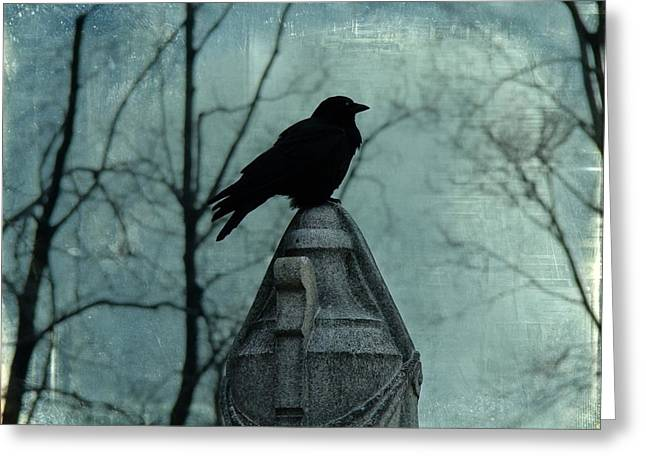 A Lone Blackbird And A Dark Blue Sky Greeting Card