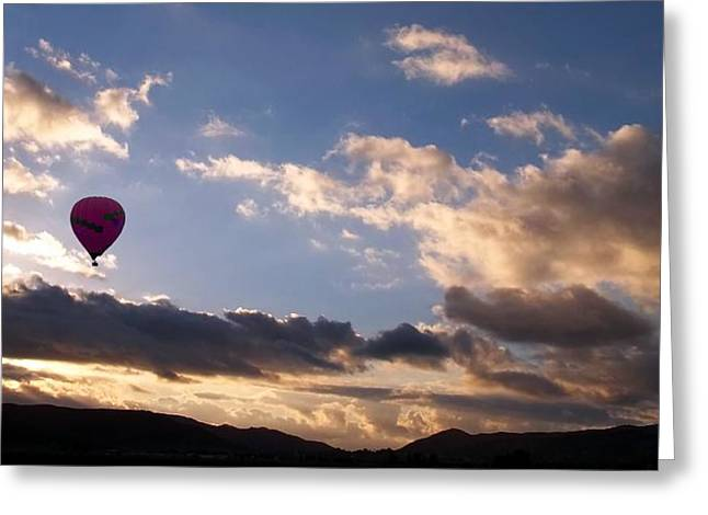 A Lone Flight Greeting Card by Glenn McCarthy Art and Photography